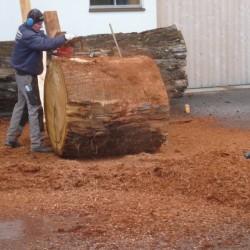 Rinde vom Baumstamm entfernen
