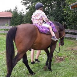 Pferdereiten